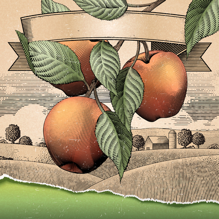 Illustration pour Illustration of apples with leaves  and a fiels scenery - image libre de droit