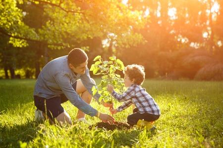 Photo pour Father and son setting plant - image libre de droit