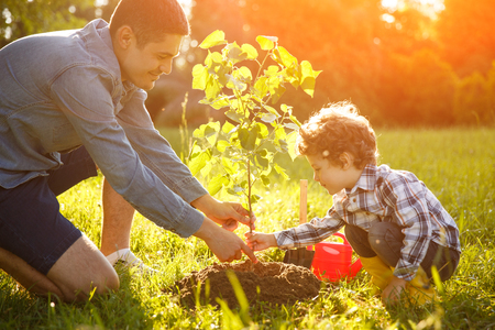 Photo pour Boy and man planting seedling - image libre de droit