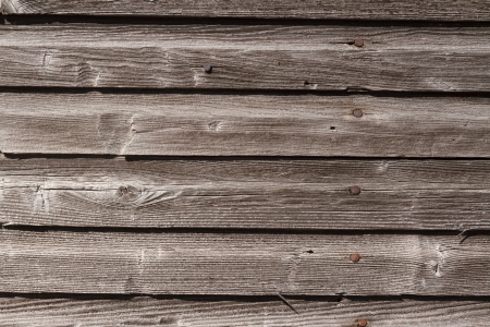 Photo for Weathered, graying wood siding with rusty nail heads - Royalty Free Image