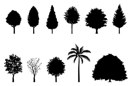 Illustration for Roadside tree   Silhouette - Royalty Free Image