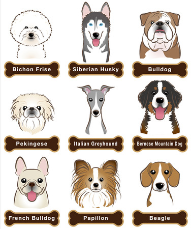 Illustration pour Dog / Nameplate - image libre de droit
