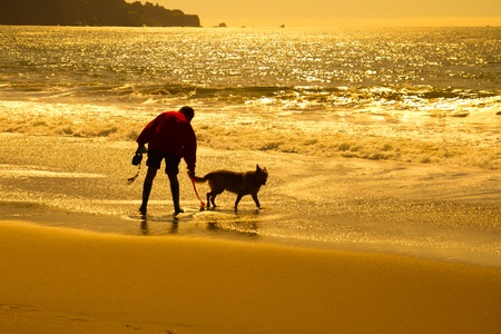 Silhouette of a man with dog playing on beach mural