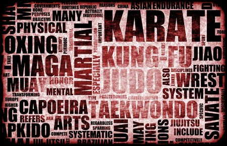 Karate Martial Arts as a Fighting Style