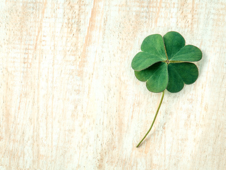 Photo for Closeup clovers leaves  setup on wooden background. - Royalty Free Image