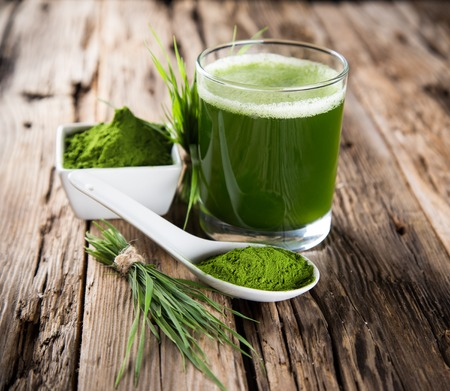 Photo pour Young barley and chlorella spirulina  Detox superfood  - image libre de droit
