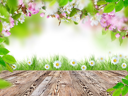 Foto de Fresh spring background with wooden table - Imagen libre de derechos
