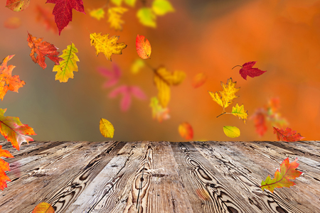 Foto de Colorful autumnal background with leaves, close-up - Imagen libre de derechos