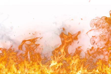 Foto de Fire flames on white background, close-up. - Imagen libre de derechos