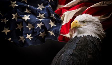 Foto de American Bald Eagle with Flag. - Imagen libre de derechos