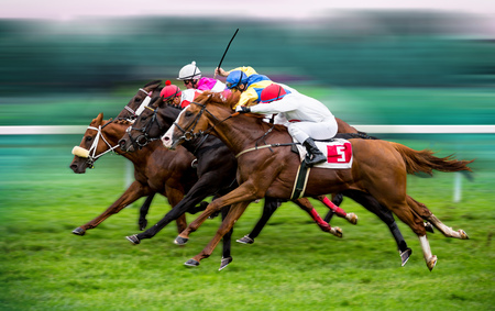 Photo for Race horses with jockeys on the home straight - Royalty Free Image