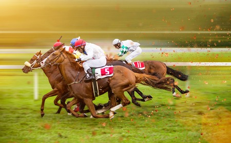 Photo for Race horses with jockeys on the home straight. Shaving effect. - Royalty Free Image