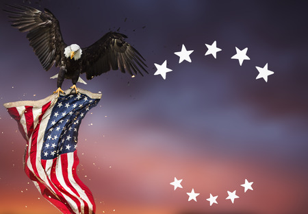 Foto de Bald Eagle flying with American flag - Imagen libre de derechos