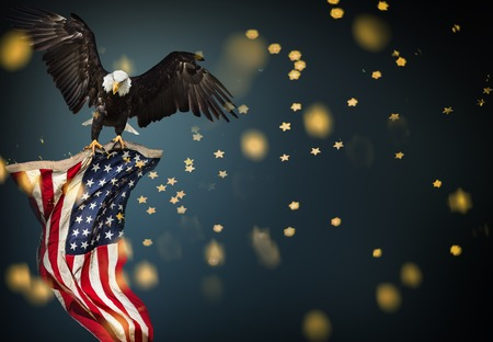 Photo pour North American Bald Eagle flying with American flag. Patriotic concept. - image libre de droit