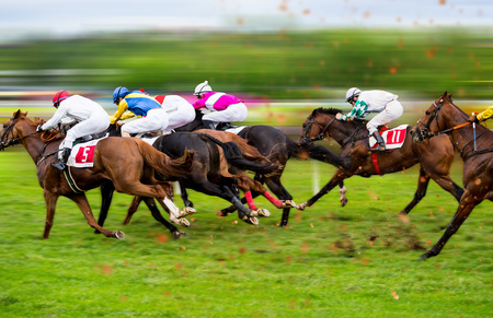 Foto per Race horses with jockeys on the home straight. Shaving effect. - Immagine Royalty Free