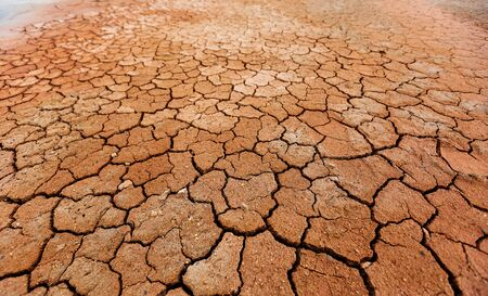Foto de Brown dry cracked ground texture - Imagen libre de derechos