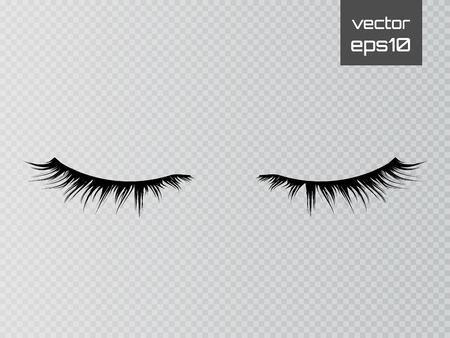 Illustration pour Lashes isolated on transparent background. False eyelashes set. Vector - image libre de droit