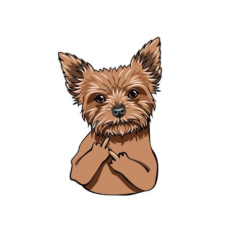 Illustrazione per Yorkshire Terrier dog. Middle finger gesture. Dog portrait. Vector illustration - Immagini Royalty Free