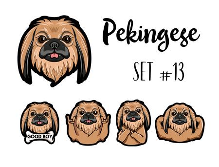 Ilustración de Pekingese dog. Gestures. Muscles, Bone, Middle finger, Horns, Muzzle, Head. Dog portrait. Vector illustration - Imagen libre de derechos