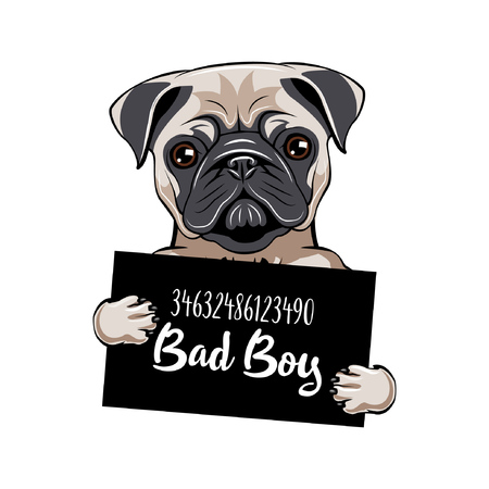 Ilustración de Pug prisoner. Pug dog Bad boy. Dog criminal. Arrested dog. - Imagen libre de derechos