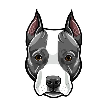 Illustrazione per Staffordshire Terrier head. Dog portrait. Cute pet. Staffordshire terrier dog breed. Vector illustration. - Immagini Royalty Free