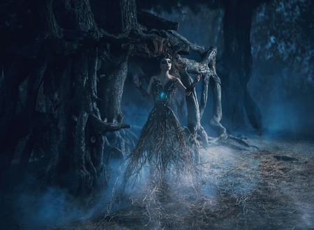 Photo pour The spirit wanders the woods in the dark magic forest girl tree took root near the mighty oak,mystical image, spells,fashion creative color toning - image libre de droit