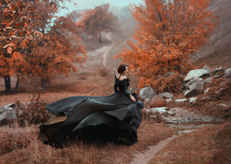 Photo pour Incredible stunning girl in a black dress. The background is fantastic autumn. Artistic photography. - image libre de droit