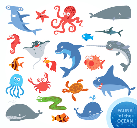 Photo pour Set funny fauna of ocean. Narwhal, hammerhead shark, white shark, whale, dolphin, swordfish, turtle, jellyfish, octopus, sea horse, crab, starfish. Funny cartoon character. Vector illustration - image libre de droit
