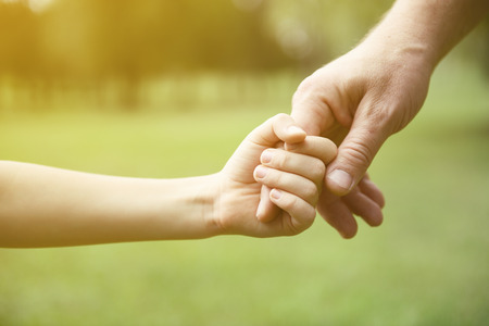 Foto de Family, father and child son hands over green summer nature outdoor. Trust and help concept. Toned. - Imagen libre de derechos