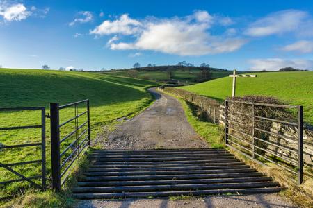 Foto de An open gate and a cattle grid leading to a country track - Imagen libre de derechos