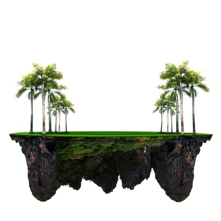 Photo pour palm tree on green grass with amazing rock underground - image libre de droit