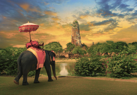 Foto de elephant dressing with thai kingdom tradition accessories standing in front of old pagoda in Ayuthaya world heritage site use for tourism and multipurpose background , backdrop - Imagen libre de derechos