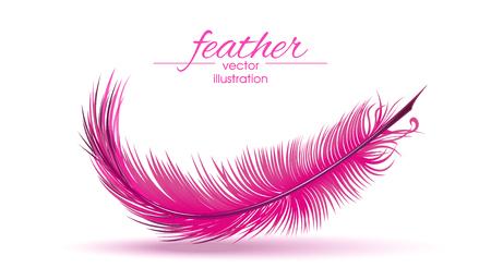Ilustración de Light pink feather isolated on white background. Vector illustration. - Imagen libre de derechos