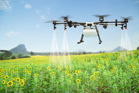 Photo for Agriculture drone spraying water fertilizer on the sunflower field - Royalty Free Image