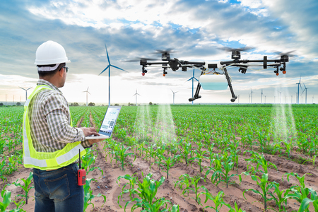 Foto de Technician farmer use wifi computer control agriculture drone fly to sprayed fertilizer on the corn fields - Imagen libre de derechos