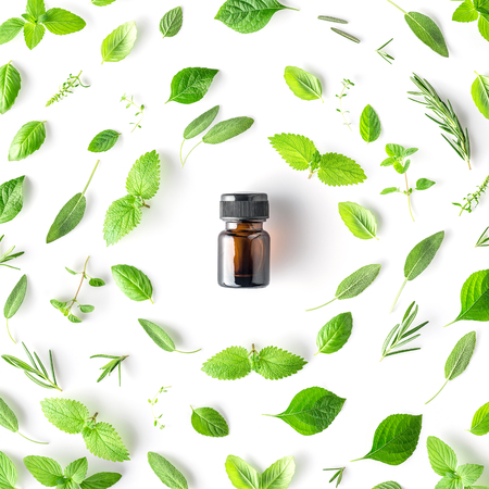 Foto de Bottle of essential oil with round shape of fresh herbs and spices basil, sage, rosemary, oregano, thyme, lemon balm  and peppermint setup with flat lay on white background - Imagen libre de derechos