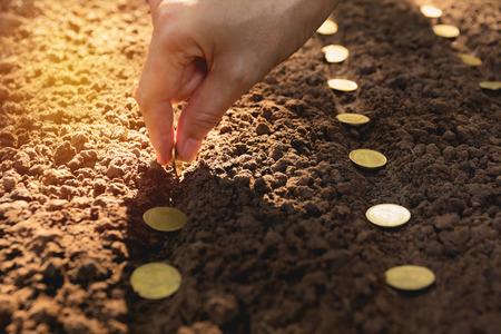 Foto de Seedling and saving concept by human hand, Human seeding coins in soil for growing money. - Imagen libre de derechos