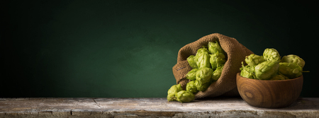 Foto de Still life with a keg of beer and hops. - Imagen libre de derechos