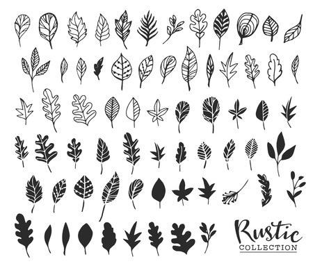 Illustration for Hand drawn vintage leaves. Rustic decorative vector design elements. - Royalty Free Image