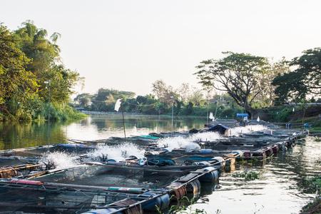 Foto de Cages for fish farming in the natural river - Imagen libre de derechos