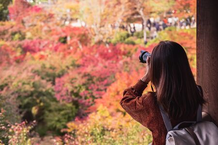 Photo pour Young woman traveler looking and photographing beautiful autumn in Japan, Travel lifestyle concept - image libre de droit