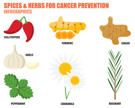 Illustration pour SPICES AND HERBS FOR CANCER PREVENTION - image libre de droit