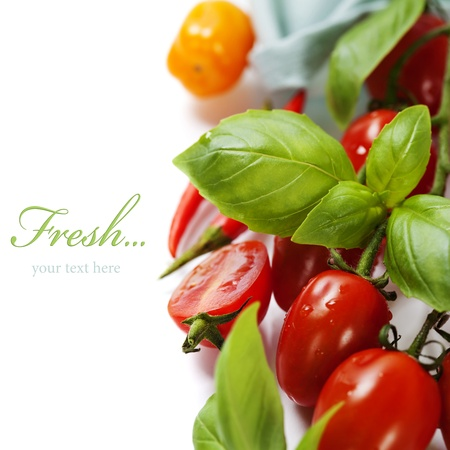 Photo pour fresh tomatoes  and basil on white  background (with easy removable sample text) - image libre de droit