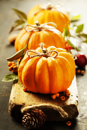 Foto de Pumpkins composition on rustic background - Imagen libre de derechos