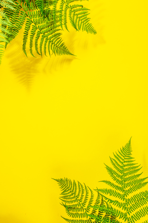 Foto de Fern leaves on yekkow background - Imagen libre de derechos
