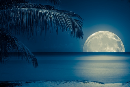 Foto de Beautiful full moon reflected on the calm water of a tropical beach (toned in blue) - Imagen libre de derechos