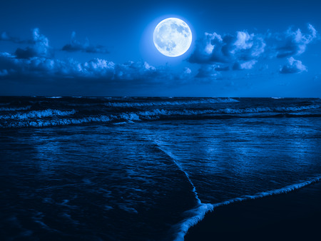 Foto de Beach at midnight with a full moon shining on the sky - Imagen libre de derechos