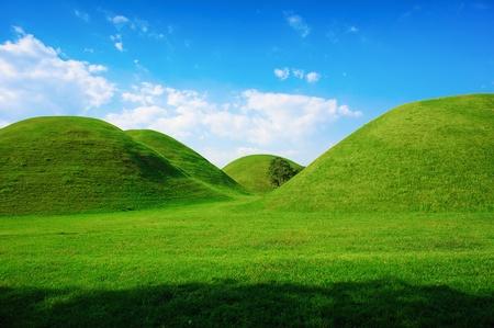 Green hills in summer