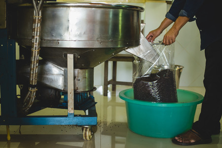 Foto de Pouring roasted coffee beans into the plastic bag from the roaster machine for selling - Imagen libre de derechos