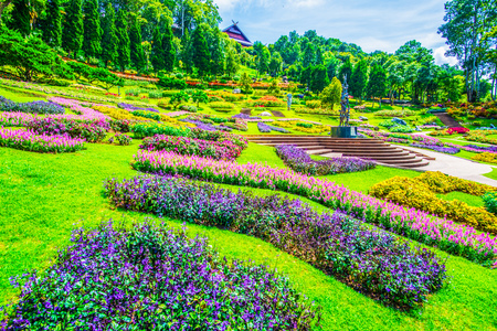 Photo for Landscape of Mae Fah Luang Garden, Thailand. - Royalty Free Image